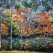 Autumn At Beaver's Bend Poster by Tamyra Ayles