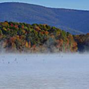 Autumn Backdrop Poster by Douglas Barnard