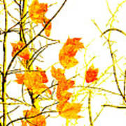 Autumn Leaves Abstract Poster by Andee Design