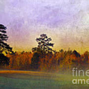 Autumn Morning Mist Poster by Judi Bagwell