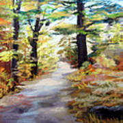 Autumn Walk In The Woods Poster by Trudy Morris