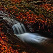 Autumn Waterfall Poster by Irinel Cirlanaru