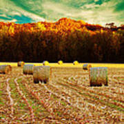Bales Of Autumn Poster by Bill Tiepelman