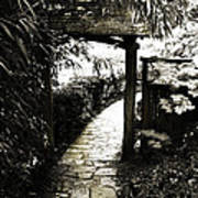 Bamboo Garden - 1 Poster by Alan Hausenflock