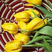 Basket Full Of Tulips Poster by Garry Gay