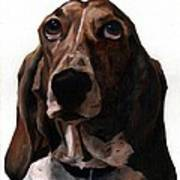 Basset Hound Named Coquette Poster by Thomas Weeks