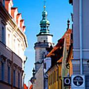 Bavarian Corridor  Poster by Anthony Citro