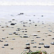 Beach Detail On Pacific Ocean Coast Of Canada Poster by Elena Elisseeva