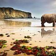 Beach Rhino Poster by Carlos Caetano