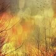 Birds In Flight At Sunset Poster by Sandra Cunningham