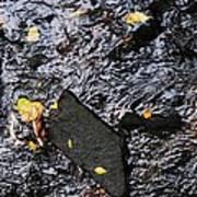 Black Rock At Graue Mill Poster by Todd Sherlock
