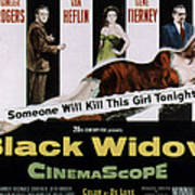 Black Widow, Ginger Rogers, Van Heflin Poster by Everett