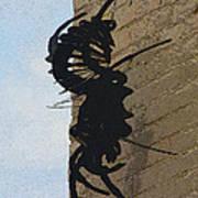 Black Widow Spider Art Poster by Karon Melillo DeVega