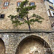 Buchlov Castle Poster by Michal Boubin