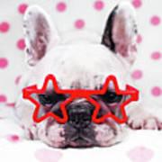 Bulldog With Star Glasses Poster by Retales Botijero