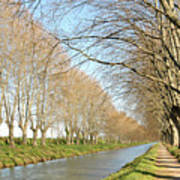 Canal With Tree Poster by Teocaramel