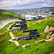 Cannons On Signal Hill Near St. John's Poster by Elena Elisseeva