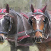 Carriage Horses Pleasure Pair Poster by Connie Moses