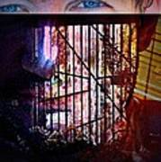 Challenge Enigmatic Imprison Himself Poster by Paulo Zerbato