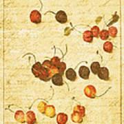 Cherries Poster by Bonnie Bruno