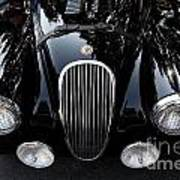 Classic Black Jaguar . 40d9322 Poster by Wingsdomain Art and Photography