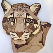Clouded Leopard Poster by Annja Starrett