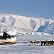 Dog Sled, Qaanaaq, Greenland Poster by Louise Murray