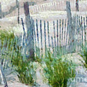 Dune Fences At Cape Hatteras National Seashore Poster by Anne Kitzman