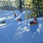 Early Snow Poster by Andrew Macara