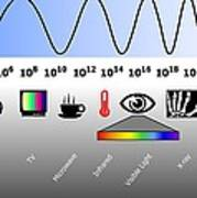 Electromagnetic Spectrum Poster by Friedrich Saurer
