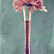 Estillo Vase - S01v4b2t03 Poster by Variance Collections