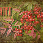 Faith Spring Berries Poster by Cindy Wright