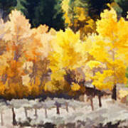 Fall In The Sierra Poster by Carol Leigh