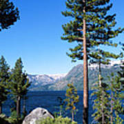 Fallen Leaf Lake Area With Pine Trees In Foreground, Lake Tahoe, California, Usa Poster by Ellen Skye