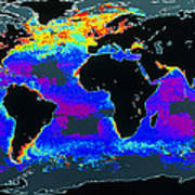 False-col Satellite Image Of World's Oceans Poster by Dr Gene Feldman, Nasa Gsfc