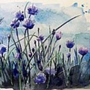 Flowering Chives Poster by Stephanie Aarons