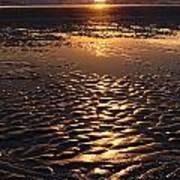 Golden Sunset On The Sand Beach Poster by Setsiri Silapasuwanchai