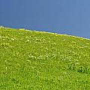 Grassy Slope View Poster by Roderick Bley