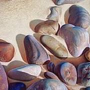 Hallett Cove's Stones - Detail Poster by Elena Kolotusha