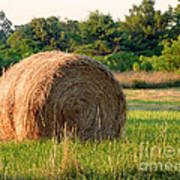 Haybale Poster by Louise Peardon