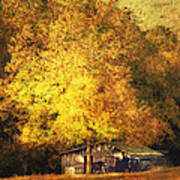 Horse Barn In The Shade Poster by Kathy Jennings