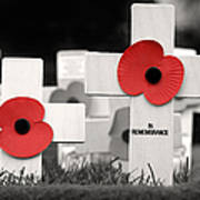In Remembrance Poster by Jane Rix