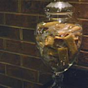 Jar Of Biscotti Poster by Sandi OReilly