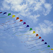 Kites Fly In A Rainbow Of Colors Poster by Stephen Alvarez