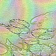 Koi Rainbow Poster by Tim Allen