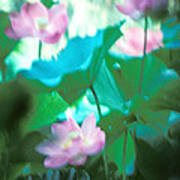 Lotus--ethereal Impressions II 20a1 Poster by Gerry Gantt