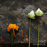 Lotus Flowers On A Thai Shrine Poster by Paul Grand