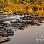 Morning Reflections Poster by Robert Bales