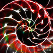 Nautilus Shell Ying And Yang - Electric - V1 - Red Poster by Wingsdomain Art and Photography