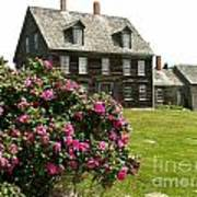 Olson House With Flowers Poster by Theresa Willingham